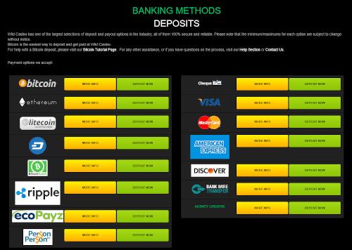 Wild Casino Banking
