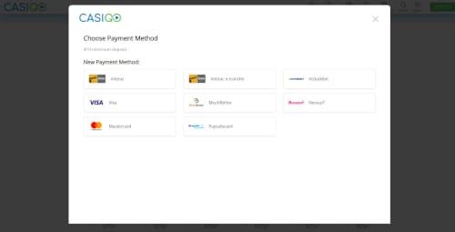 Casigo Payment Methods